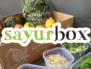 situs belanja sayur online sayur box