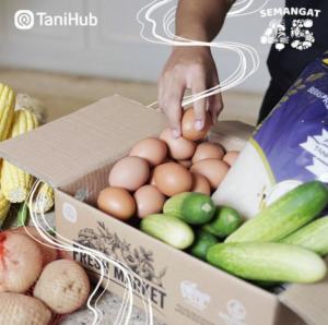 situs belanja sayur online tanihub